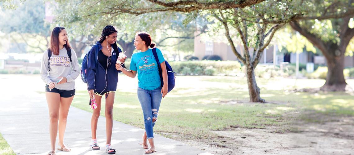 Enrollment Up 20 Percent